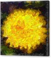 Flowery Acceptance In Abstract Canvas Print