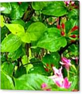 Flowery Flope Canvas Print