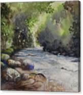 Flowing Along Canvas Print