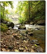 Flowing River Canvas Print