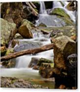 Flowing Stream Canvas Print