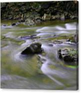 Flowing Water 2 Canvas Print