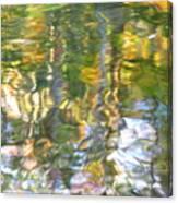 Fluctuations Canvas Print