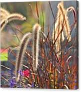 Fluffy Herbs Canvas Print