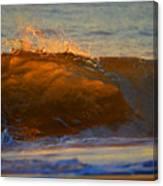 Flutter Of Amber Canvas Print