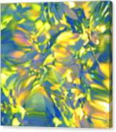 Fluttering Of Color Canvas Print