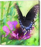 Fluttering Wings Of The Butterfly Canvas Print