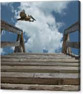Fly By At The Beach - Brown Pelican And Rustic Stairs Canvas Print