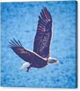 Fly By Eagle. 2 Of 3 Canvas Print