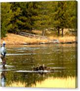 Fly Fishing On The Madison Canvas Print