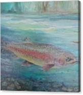 Flyfishing Canvas Print