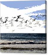 Flying Gulls Canvas Print