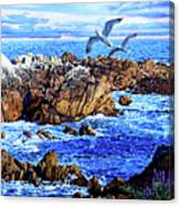 Flying High Over California Canvas Print