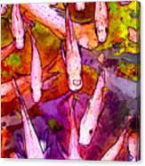 Flying Koi Canvas Print