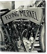 Flying Merkel Canvas Print