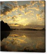 Flying Reflections Canvas Print