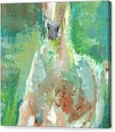 Foal  With Shades Of Green Canvas Print