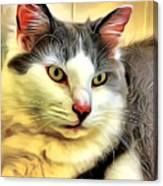 Focused Feline Canvas Print