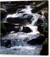 Fodder Creek Canvas Print