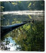 Fog And Reflection Of Stream Canvas Print