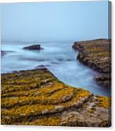 Fog And The Sea Canvas Print