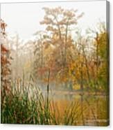Fog On The Bayou Canvas Print