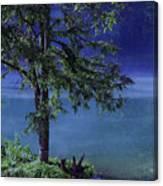 Fog Over The Pond Canvas Print