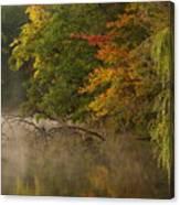 Fog Rolls Into Fall Canvas Print