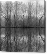 Foggy Lagoon Reflection #3 Canvas Print