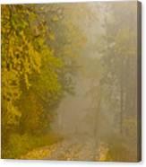 Foggy Autumn Morn Canvas Print