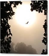 Foggy Heron Flight Canvas Print
