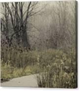 Foggy Late Fall Morning Canvas Print