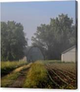 Foggy Mist Lane Canvas Print