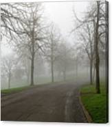 Foggy Morning At The Park Winding Path Canvas Print