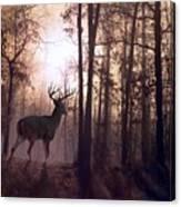 Foggy Morning In Missouri Canvas Print