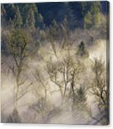 Foggy Morning In Sandy River Valley Canvas Print