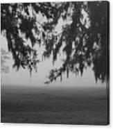 Foggy Morning Study Vii Canvas Print