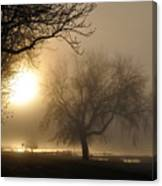 Foggy November Sunrise On The Bay Canvas Print