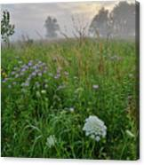 Foggy Prairie In Glacial Park In Mchenry County Canvas Print