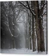 Foggy Vermont Winter Path Canvas Print