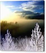 Foggy Winter Sunset Canvas Print