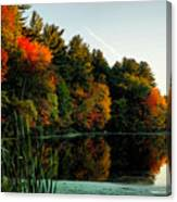 Foliage Reflections Canvas Print