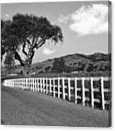 Follow The Fence Canvas Print
