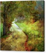 Following My Vision Canvas Print