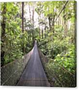 Foot Bridge In Costa Rica Canvas Print