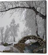 Footbridge Over The Creek Canvas Print