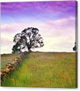 Foothill Sunrise Canvas Print
