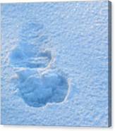 Footprint In The Snow Canvas Print