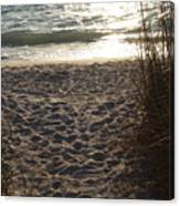Footprints In The Dunes Canvas Print
