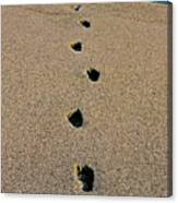 Footprints In The Sand ... Canvas Print